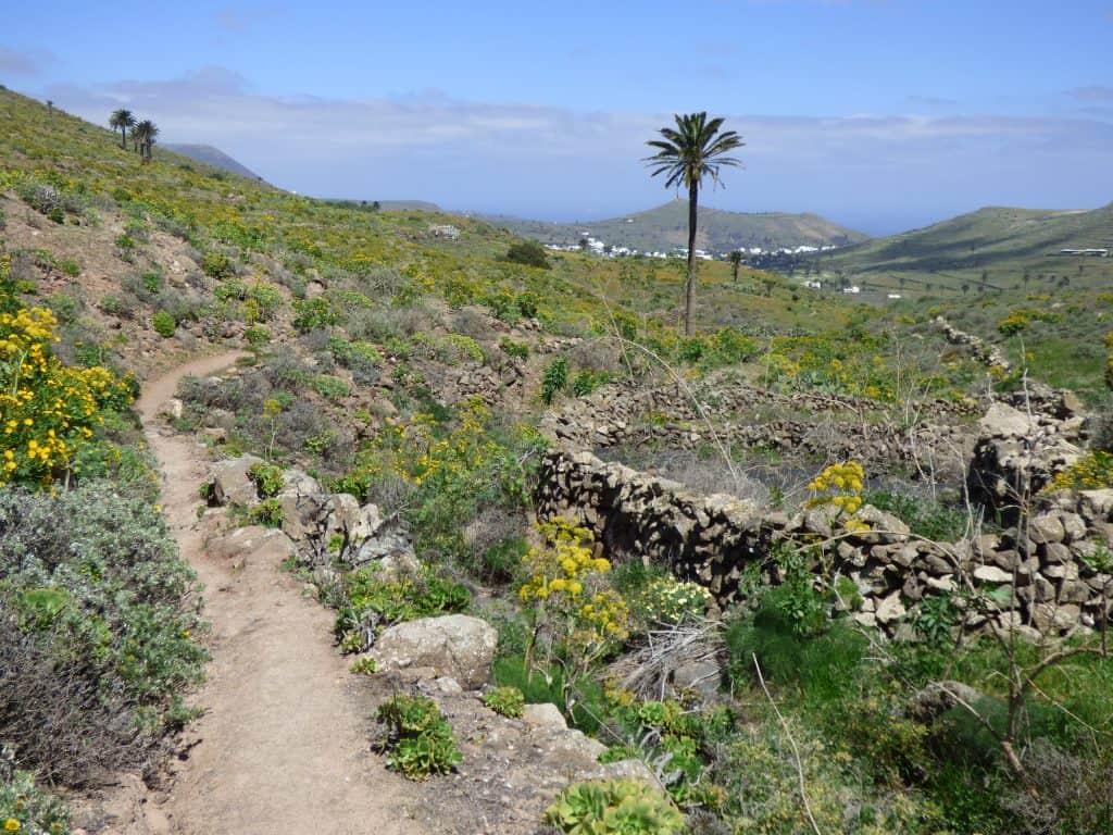 Lanzarote Wandern