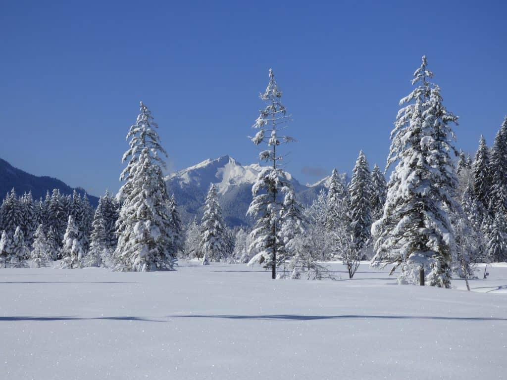 Schneelandschaft bei Oberammergau