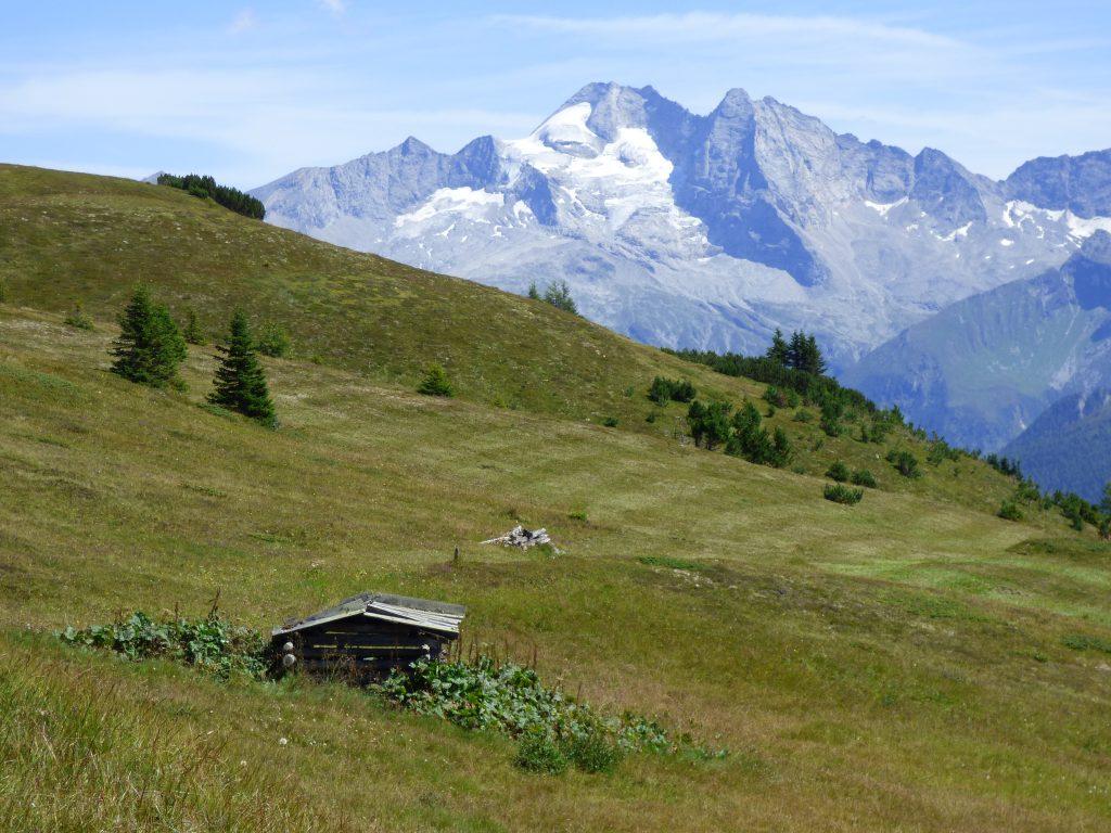 Tolle Blicke auf die Zillertaler Alpen