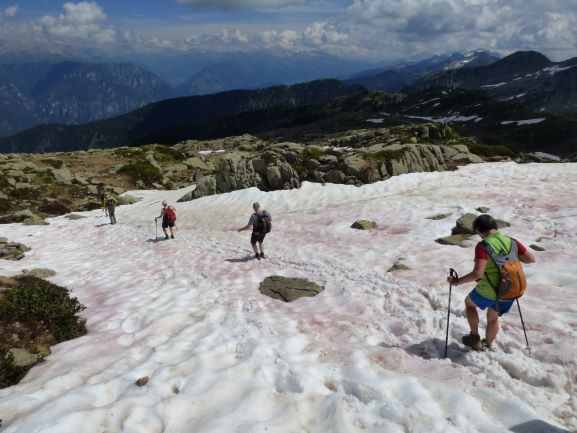 Bergwanderungen im Frühsommer bieten auch Schneevergnügen.